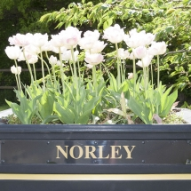 norley-cheshire