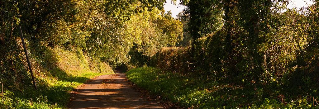 path norley cheshire