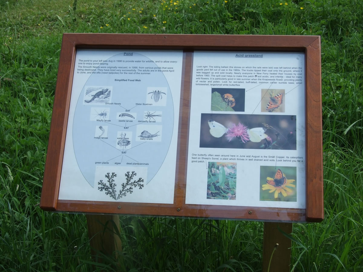 norley wildlife garden lectern design